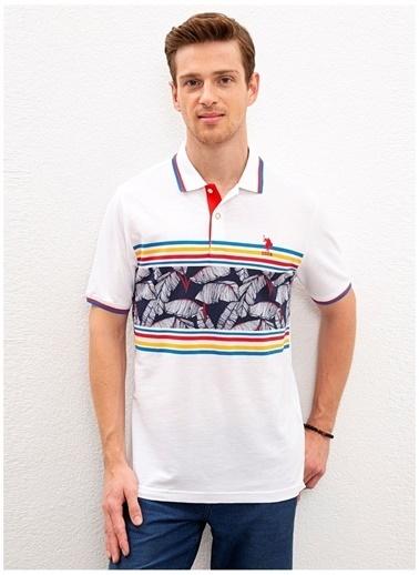 U.S. Polo Assn. U.S. Polo Assn. Polo Yaka Beyaz Renkli Çizgili Desenli Erkek T-Shirt Beyaz